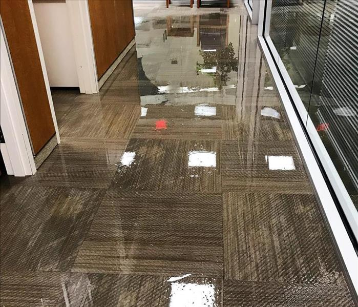Commercial Ways That Commercial Property Owners Can Avoid Water Damage To Their Business