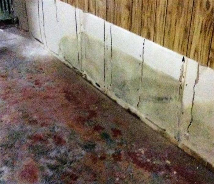 Mold Remediation Basements, Attics and Leaky Pipes: The Causes of Mold Growth in Litchfield County Homes