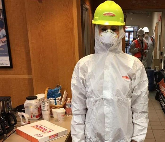 Mold Remediation Safety Precautions When Dealing With Mold