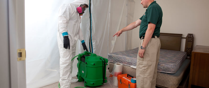 Southbury, CT mold removal process